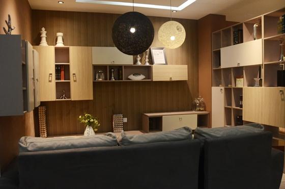 客厅电视背景墙,收纳柜